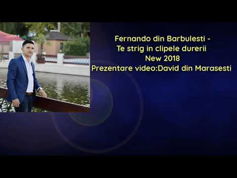 Fernando din Barbulesti - Te strig in clipele durerii new 2018