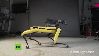 VIRAL: El robot que hace twerk incendia las redes con sus bailes