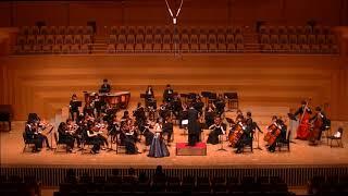 Tchaikovsky : Violin Concerto in D major Op.35 , 1st Movement