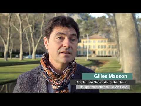 Provence 2016 - Résumé