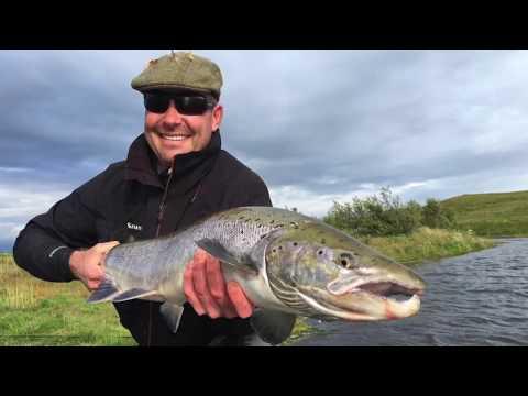 Salmon Fishing in Iceland - West Ranga Salmon Battles