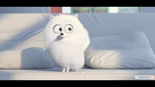 Тайная жизнь домашних животных (2016). Трейлер на русском HD.