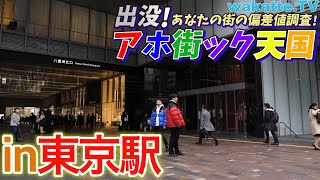 東京駅付近でアホ街ック天国!【wakatte.TV】#327