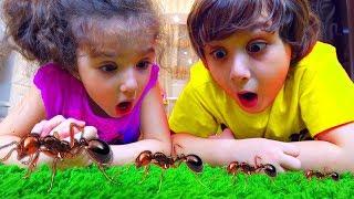 Камиль и Аминка Купили НЕОБЫЧНУЮ ВЕЩЬ! Для детей kids children