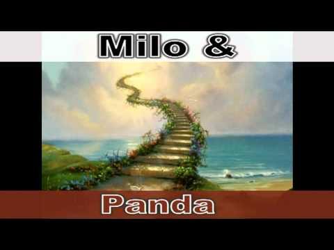 Milo & Panda - Marzenia vs Rzeczywistość