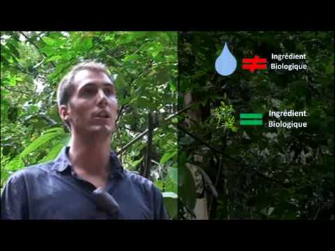 Cosmétiques bio : La certification Ecocert - Une vidéo www.planete-responsable.com