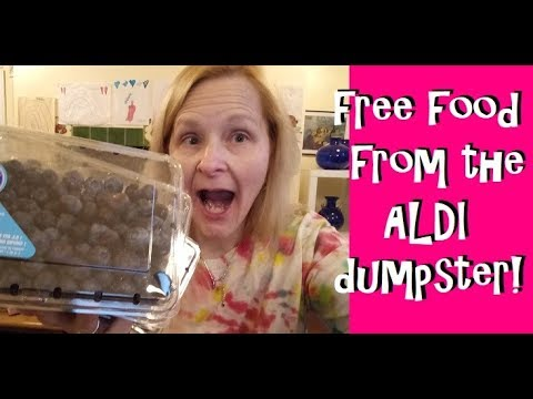 Free Food From The ALDI Dumpster!  Dumpster Diving and Extre