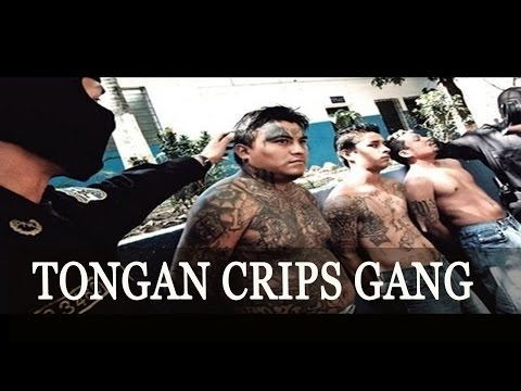 Crime Documentary ➤ Tongan Crips Gang