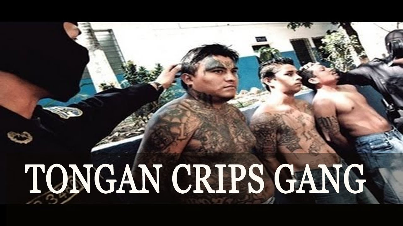 Tongan Crips Gang Documentary