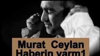 Murat CeyLan Haberin Varmı Şiir 2013
