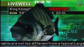 Cara Mendapatkan King Bluegill Di Big Ol Bass2