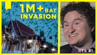 MILLIONS OF BATS INVADE THAILAND TEMPLE!!! Bats Are Evidence for DESIGN not EVOLUTION | CTS S3 E1