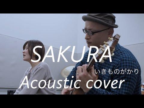 """いきものがかり  SAKURA IkimonoGakari """"Sakura"""" Acoustic Cover"""