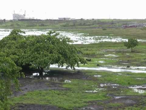 The secrets of Trinidad's black lake