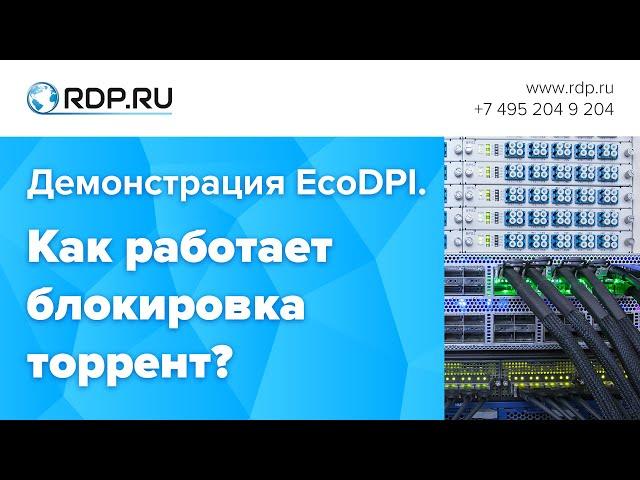 Демонстрация EcoDPI. Как работает блокировка торрент?
