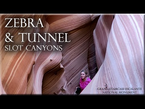 Zebra and Tunnel Slot Canyons Escalante, Utah.