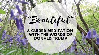 """""""BEAUTIFUL"""": A GUIDED MEDITATION WITH THE WORDS OF TRUMP"""