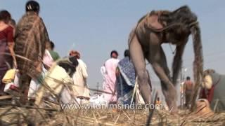 Repeat youtube video Western sadhus watch as Naga Sadhu applies human cremation ash on his body : Kumbh Mela, Allahabad