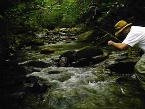 Fly fishing pocahontas county wv youtube for Private trout fishing in missouri