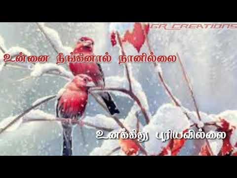 tamil WhatsApp status lyrics || kuchi kuchi raakkma song lyrics