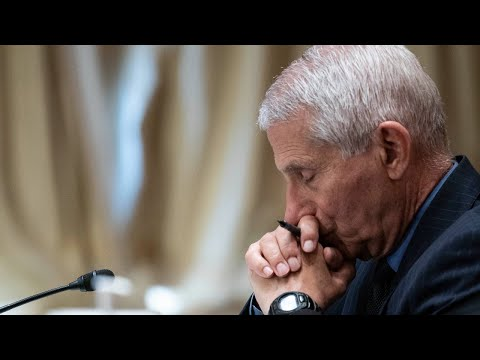 Fauci defended by Biden administration even as his 'cover-up unravels'