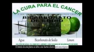 PREVENCIÓN Y CURA DEL CANCER