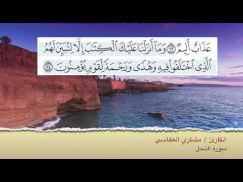 القرآن الكريم سعد الغامدي