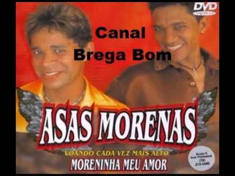 Asas morenas-Asa morena