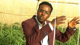 Somaliland agriculture Technology Documentary film thumbnail