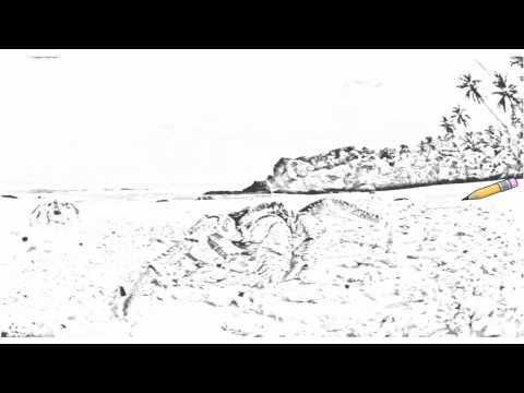 Auto Draw 2: Coconut Crabs, Christmas Island
