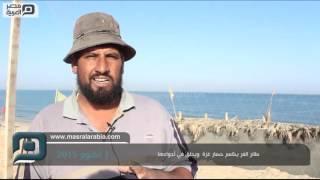 فيديو| طائر السمان يكسر حصار غزة