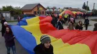Ziua Armatei Române - 25 OCTOMBRIE 2014 - Marsul Tricolorului - Oraşul Răcari