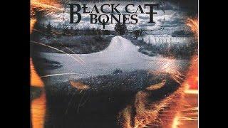 Emission boogie radiodio11 février 2015 Black Cat Bones live