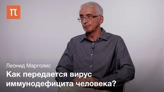 Антигены индивидуальных вирусных частиц — Леонид Марголис