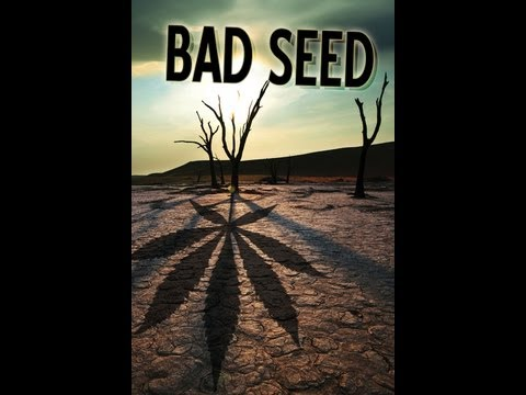 Bad Seed is listed (or ranked) 11 on the list The Best Norman Reedus Movies