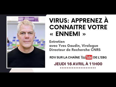 Entretien avec un Virologue, Yves Gaudin, Directeur de Recherche au CNRS