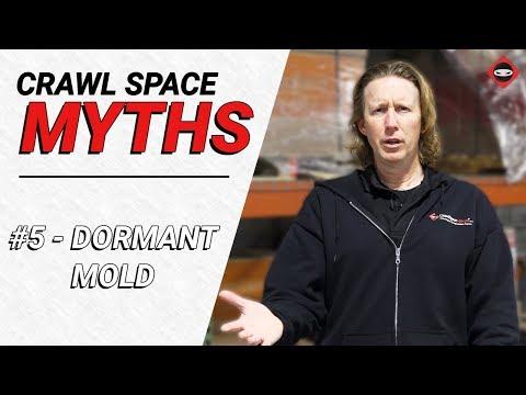 Crawl Space Myth #5 - Do Dehumidifiers Make Mold Go Dormant?