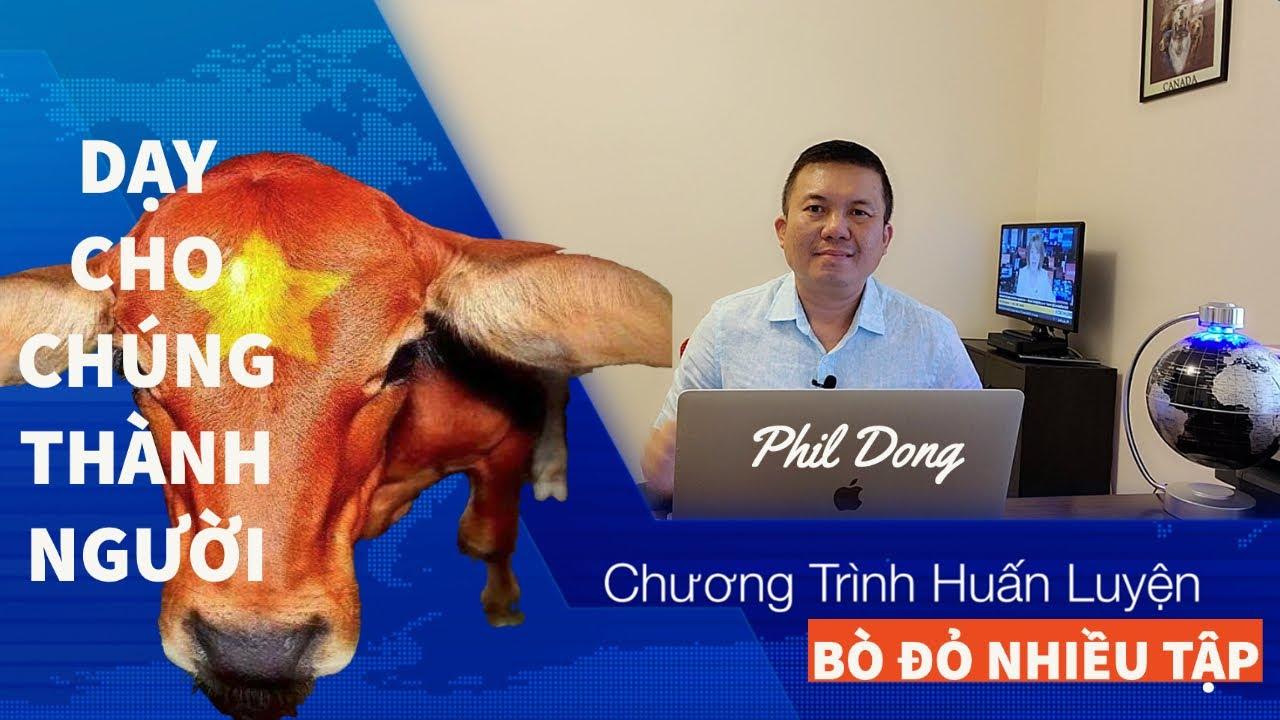 Phil Dong đáp trả lại mãnh liệt với đám bò đỏ vô liêm sĩ (phần 9)