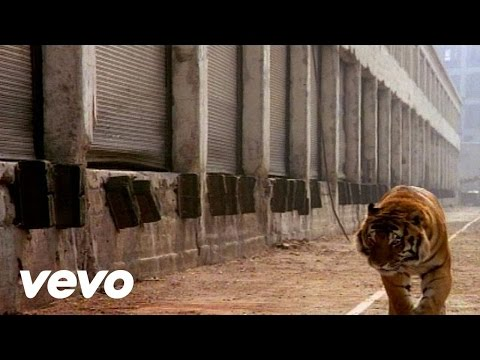 Glass Tiger - Animal Heart