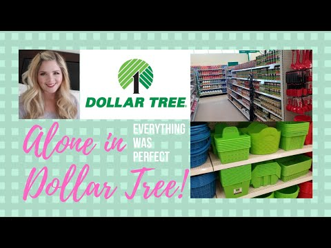ALONE IN BRAND NEW DOLLAR TREE!!// Dollar Tree Grand Opening Shop With Me!!