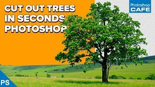 INSTANTLY CUT OUT TREES in PHOTOSHOP   Channel based selections
