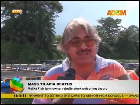 Mass Tilapia Deaths: Malika Fish-farm owner rebuffs stock poisoning theory (23-10-18)
