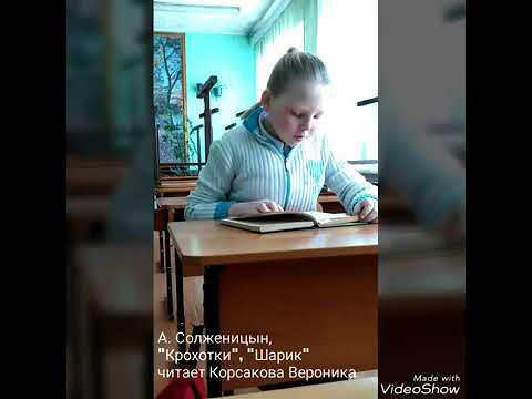 Изображение предпросмотра прочтения – ВероникаКорсакова читает произведение «Шарик.»