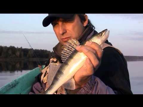 надеевское водохранилище рыбалка видео