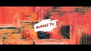 Starr Boi ft. NELI - NUMAI TU (Official Audio)
