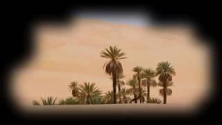 Sufi Muhammed Dest i Gül FuLL KASİDE (02 KeKoCaN )