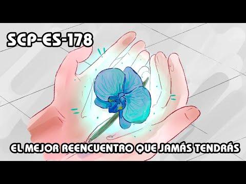 Las mejores CANCIONES INFANTILESиз YouTube · Длительность: 29 мин1 с