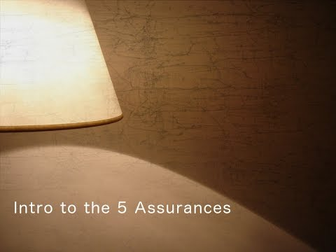 Intro to the 5 Assurances