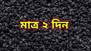 প্রতিদিন ঘুমানোর সময় কালোজিরা খেয়ে ঘুমালে, সকালে কি ঘটবে জানেন আপনি || Benefits Of Black Cumin