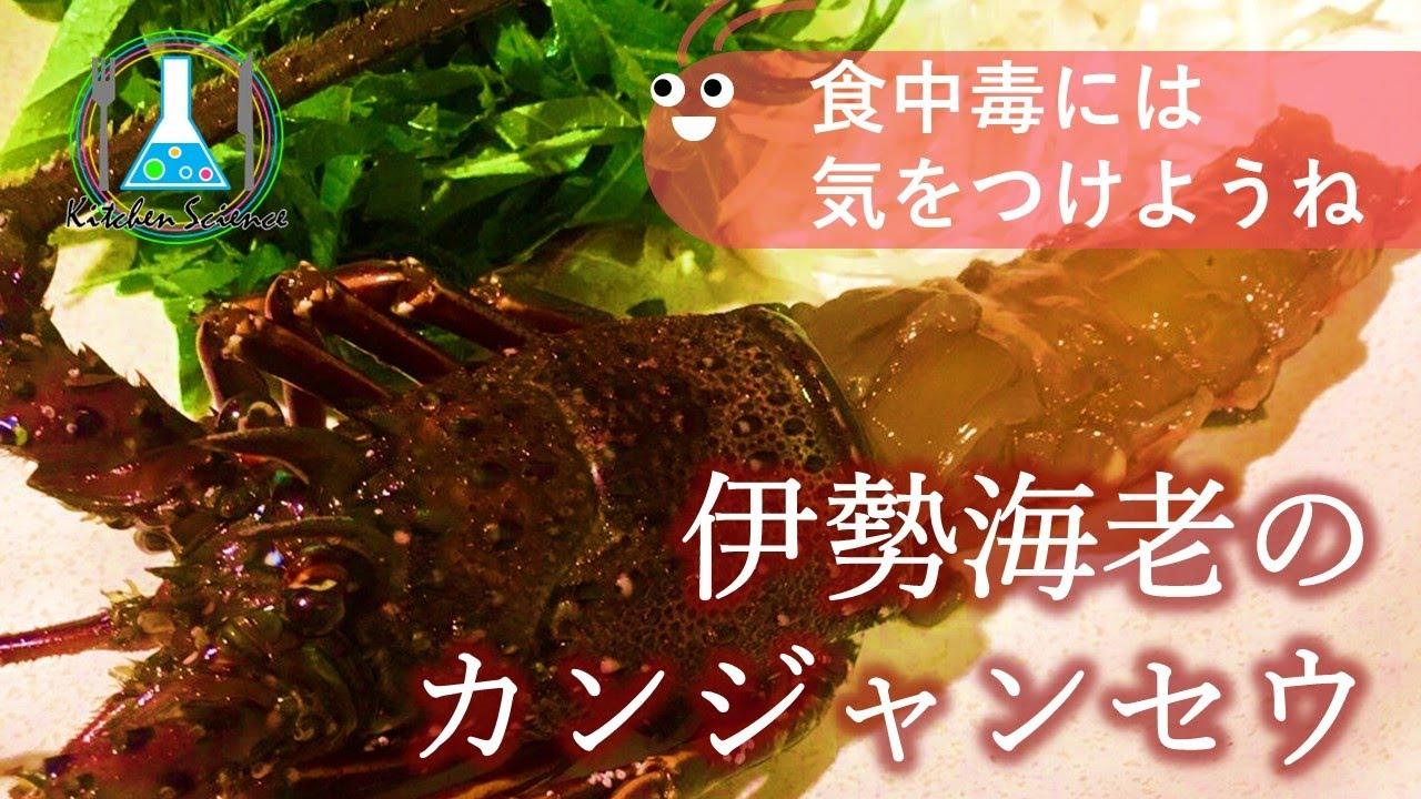 【贅沢に】伊勢海老のカンジャンセウ ~食中毒には気を付けよう~